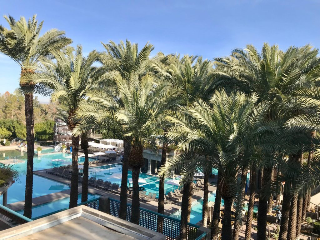 Pool view from suite in scottsdale