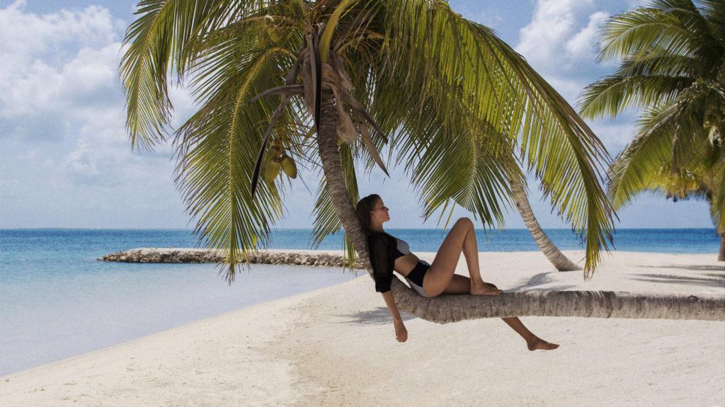Belize Island Palm Tree Four Seasons